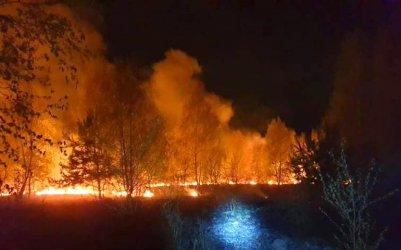 Kolejny pożar traw w powiecie