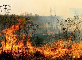 Region: Suche trawy znów płoną