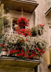 Wręczyli nagrodę za najpiękniejszy balkon