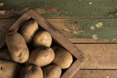 Święto Ziemniaka w Brzustowie