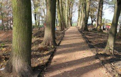 Park w Woli Krzysztoporskiej zmienia się