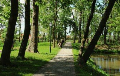 Przyrodnicza perła województwa łódzkiego. Zabytkowy park w Woli Krzysztoporskiej