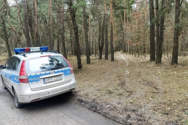 Pół tysiąca grzywny za wylewanie brudów w lesie