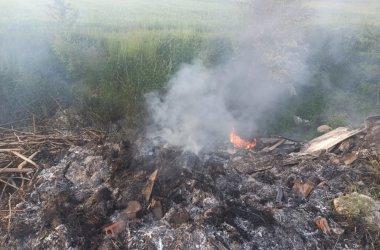Strażacy z Piotrkowa i regionu walczyli z pożarem dzikiego wysypiska