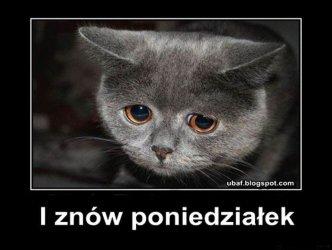 Nie lubię poniedziałku! Jak mieszkańcy województwa łódzkiego radzą sobie ze stresem?