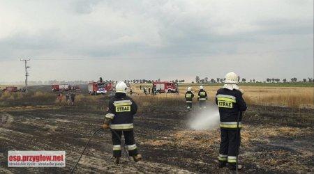 Aż 10 pożarów pól gasili w sobotę nasi strażacy