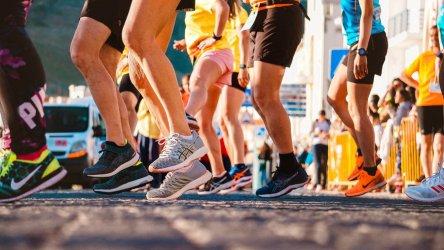 Trwają zapisy na VII Maraton Wokół Zalewu Sulejowskiego