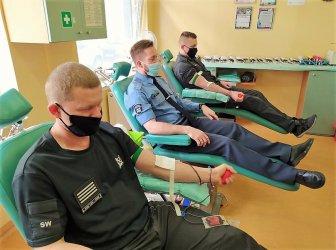 Funkcjonariusze Aresztu Śledczego oddali krew z okazji swojego święta