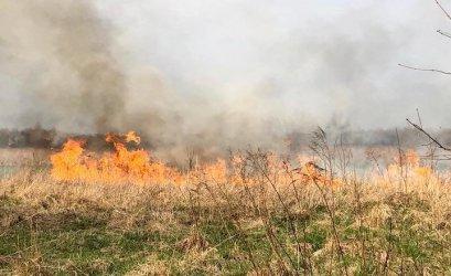 Pożar traw w Piotrkowie