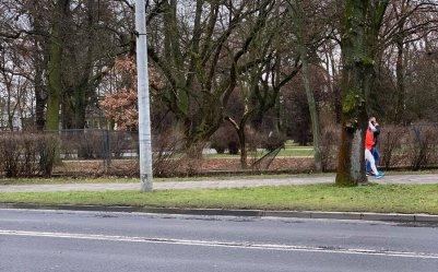 Mercedesem wjechał w ogrodzenie parku