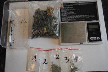 Sulejowianin i 13 gramów marihuany