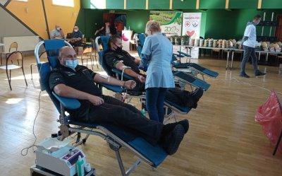 Ponad 25 litrów krwi dla Olka, Kacpra i Łukasza