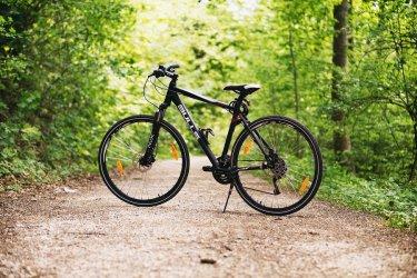 """Z cyklu """"Przyroda zawsze Ci Odda"""": Zwiedzaj gminę Sulejów rowerem"""