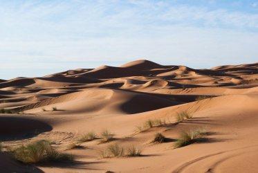 Nasze województwo może zamienić się w pustynię