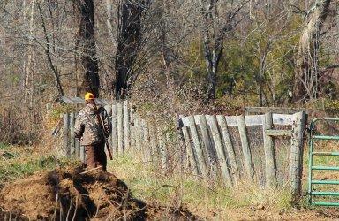 Sondaż: Polacy chcą, by zaprzestać polowania na ptaki