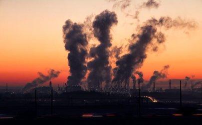Zanieczyszczone powietrze to słabsze kości