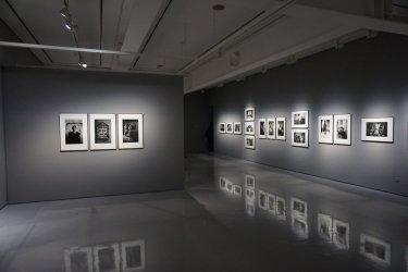 Licytacje dzieł sztuki, czyli jak sprzedać obraz z głową