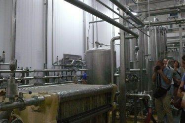 Piotrków: Zobacz jak powstaje piwo