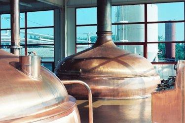 Piotrków: Browar CORNELIUS  z pasją warzy piwa