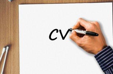 Profesjonalnie stworzone CV