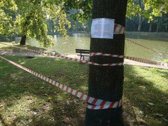 Deratyzacja w parku Belzackim. Zachowajcie ostrożność podczas spacerów!