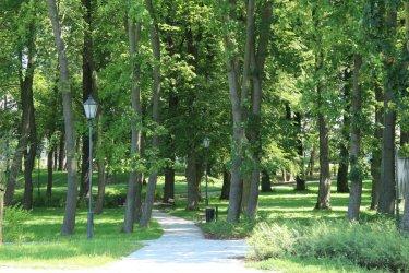 Wolski park podoba się urbanistom