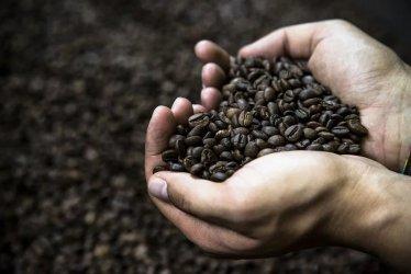 Kawa pozwala walczyć z nadwagą