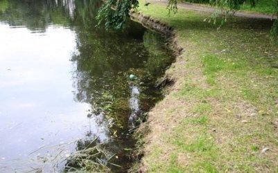 Szczury w parku Belzackim, potrzebna deratyzacja