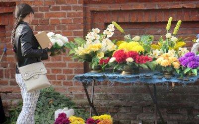 W tym roku na piotrkowskich grobach dominują chryzantemy
