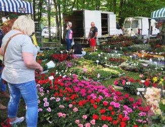 Kwiaty, sadzonki i zdrowa żywność na kolejnych targach w Bykach