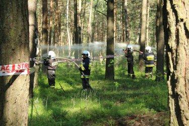 Ćwiczyli, jak gasić las
