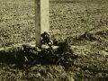 Tymczasowy pamiątkowy krzyż upamiętniający poległych żołnierzy Armii Łódź na polach pod Piotrkowem.