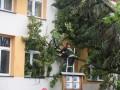 ul. Krasickiego