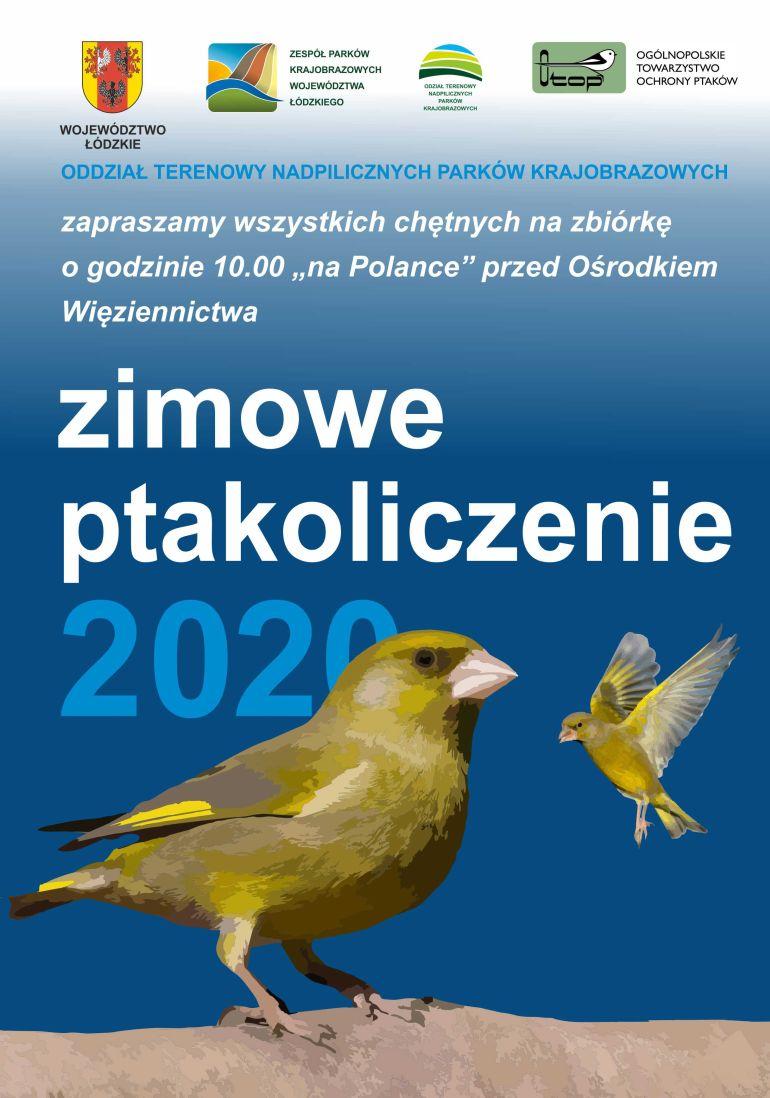 Zimowe ptakoliczenie 2020. Weź udział w wycieczce terenowej