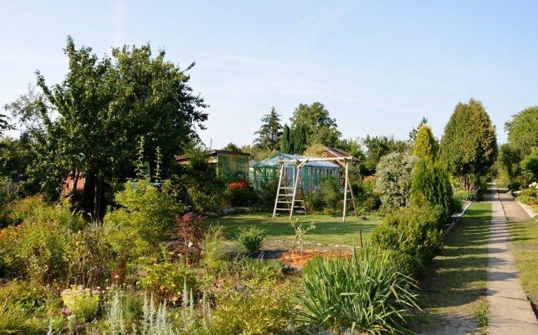 Ogródki działkowe w Budżecie Obywatelskim Piotrkowa