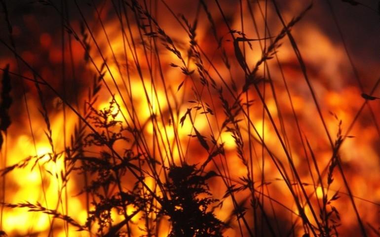 Podpalał, bo lubił patrzeć na ogień