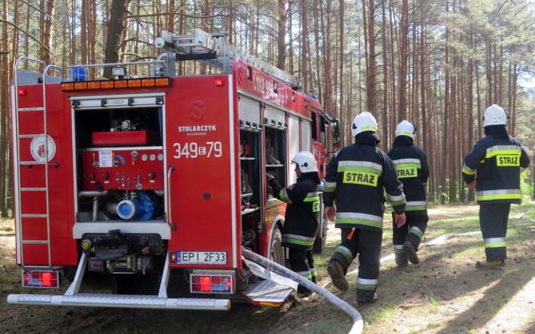 Pożary lasów w powiecie piotrkowskim. Strażacy apelują o rozwagę