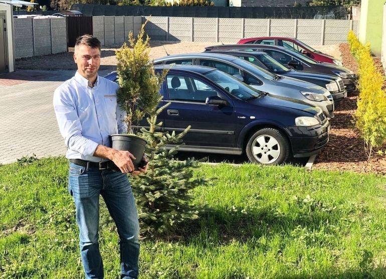 Dużo zieleni na nowym parkingu w Wolborzu