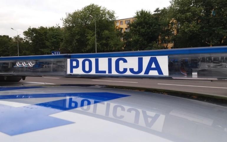 Policja apeluje: uważajcie na dziki